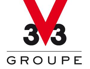 V33 groupe_Logo OK